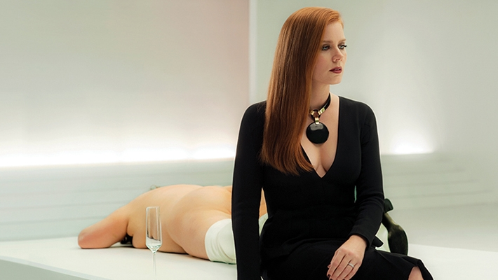 Nocturnal-Animals-Feature
